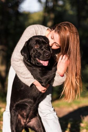 cura del pelo del cane Dogs Health