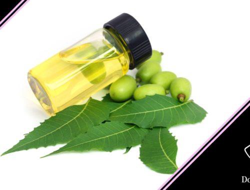 olio di neem cani foglie semi