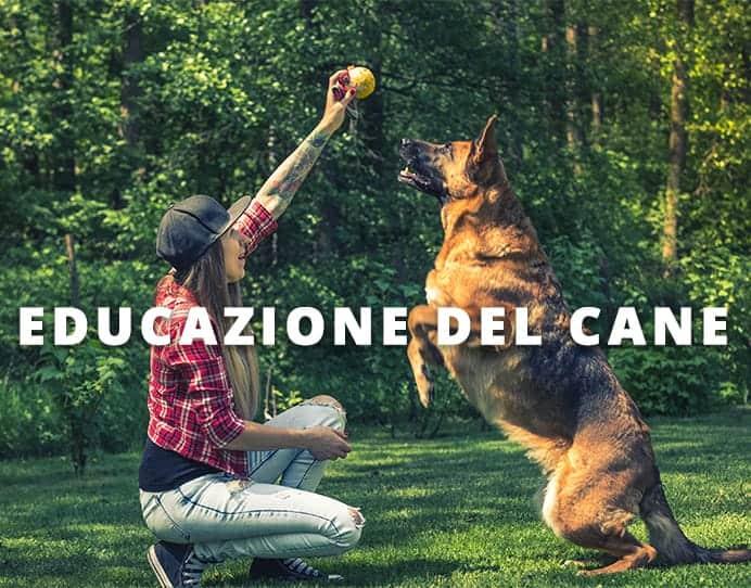 educazione del cane Dog's Health