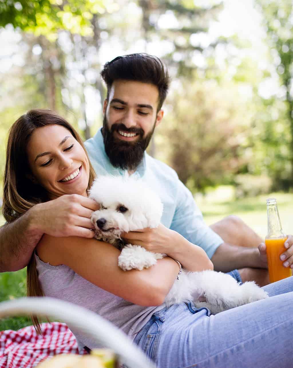 dogs health spray pelo lucido cane
