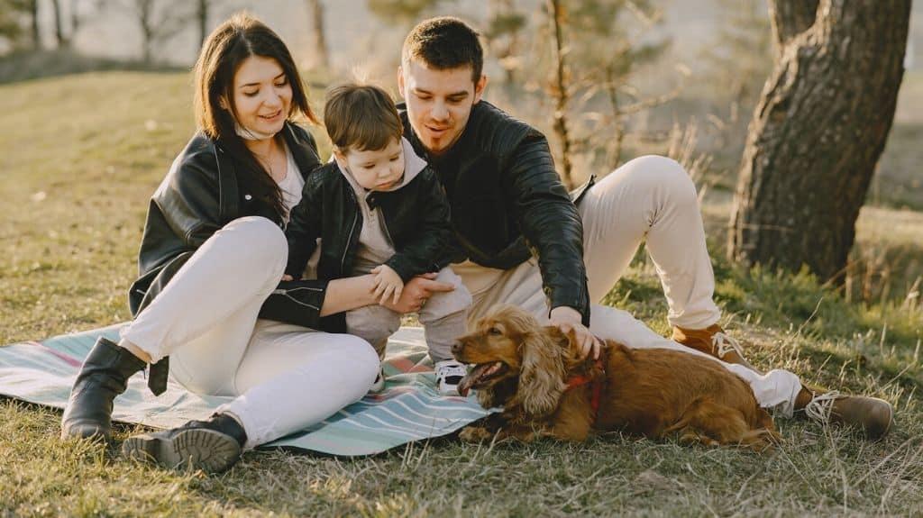 adottare cane in famiglia con bambini