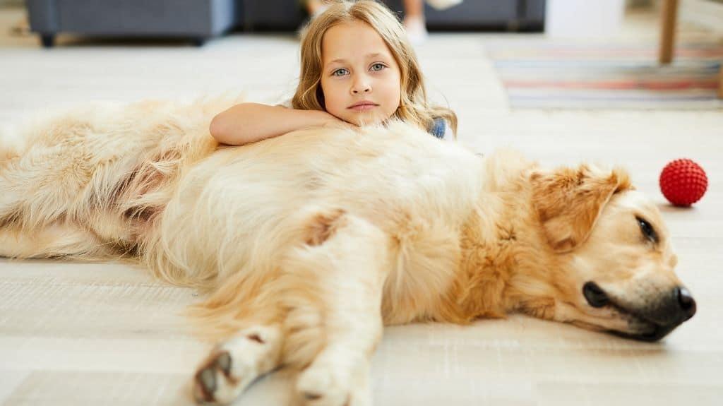 carattere labrador con bambini