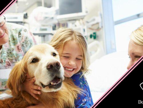 igiene del cane da pet therapy