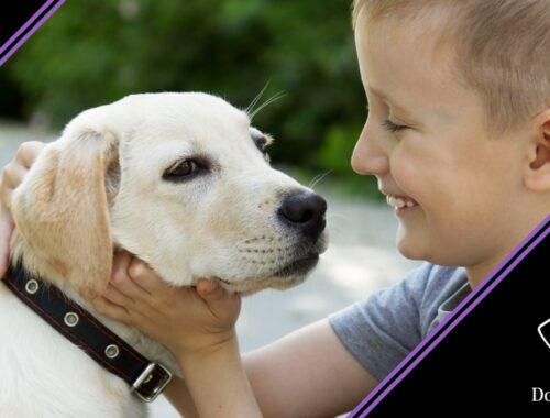 autismo e pet therapy