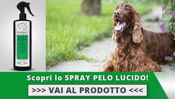 Spray pelo lucido cane dogshealth