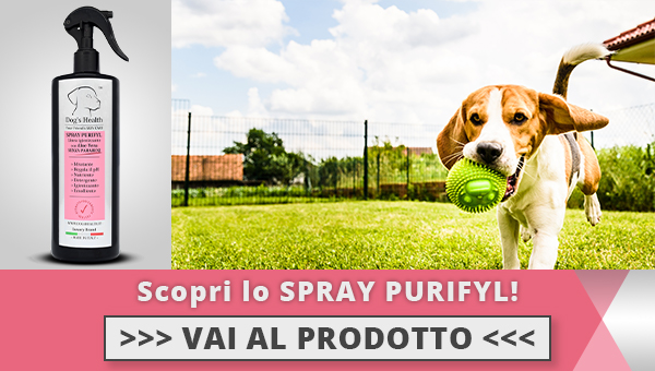 Spray purifyl cane dogshealth