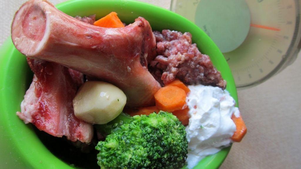 carne e verdura per cani